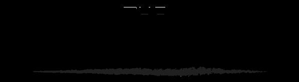 Academy logo 1